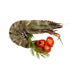 FISH064 Black Tiger Prawns 8/12