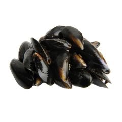 FISH044 Mussels (shell on)