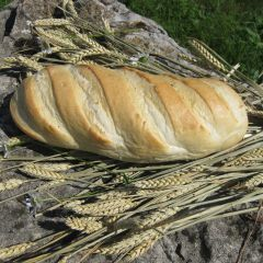 204938C Baltic Loaf (Planete Pain)