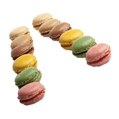 308361C Assorted Macarons (Pidy)